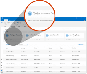 Outlook Custom Manager